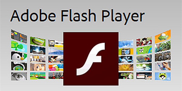 flash player 10.2下载